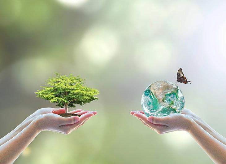 Resultados Ambientales Industrias Sanlo, S.A. 2020